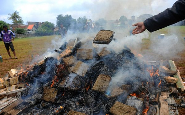 Police burn Marijuana (and other drugs), gets the whole town high
